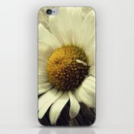 Vintage Daisy iPhone & iPod Skin