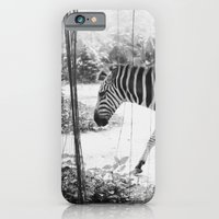 iPhone & iPod Case featuring Zebra by SARAH KOHLER - TWENTYBLISS