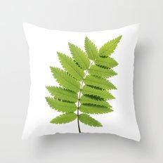 Green Rowan Leaf  Throw Pillow