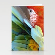Feathered Friends Stationery Cards