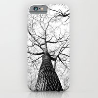 Lonely Branches iPhone 6 Slim Case
