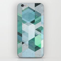 Nordic Combination 22 iPhone & iPod Skin