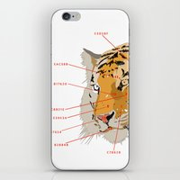 Tiger Colors iPhone & iPod Skin