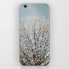Blooming Tree iPhone & iPod Skin