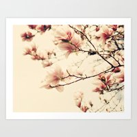 Magnolia Days Art Print