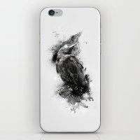 Crow  iPhone & iPod Skin