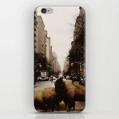 wilderness 9 iPhone & iPod Skin