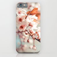 iPhone & iPod Case featuring Spring Flowers by Ashley Jensen