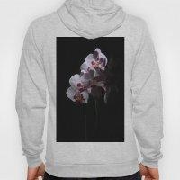 Orchidee 1 Hoody
