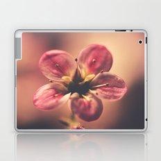 Dramatic Laptop & iPad Skin