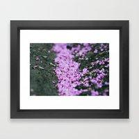 Sweet Memories Of Spring Framed Art Print