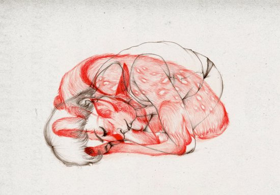 Wildlife VII Canvas Print