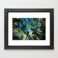 Falling Coco's Framed Art Print