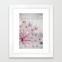 Vintage Raspberry Pink and Paris Gray Botanical Queen Anne's Lace Wildflower Framed Art Print