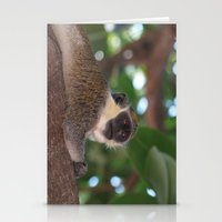 Just Chilling Stationery Cards