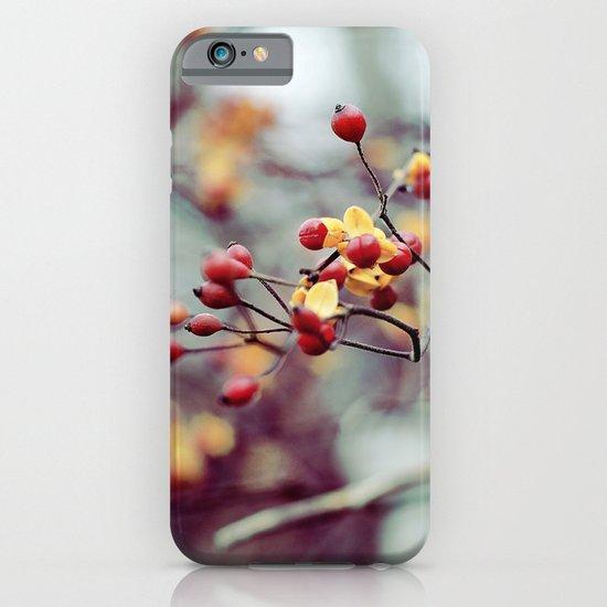 Frozen Fruit iPhone & iPod Case
