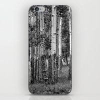 Summer Aspen Stand in Black and White iPhone & iPod Skin