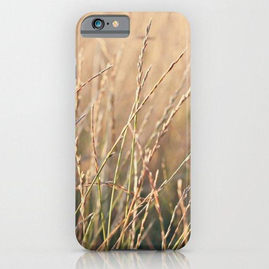 Field in the Sun iPhone & iPod Case
