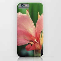 Beauty is in the eye of the beholder  iPhone 6 Slim Case