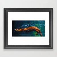Otter Bubbles Framed Art Print