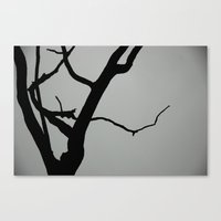 TREE ON JOANNA BALD Canvas Print