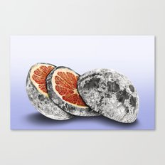 In which there is a mandarin in the moon Canvas Print
