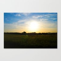 Dusk Cornfields Canvas Print