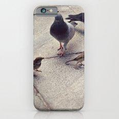 I envy birds iPhone 6 Slim Case
