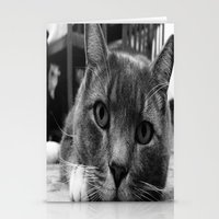Kitty Stationery Cards