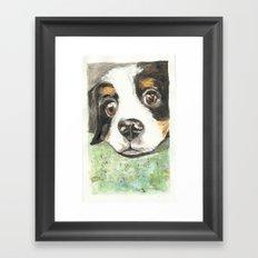 Murphy Framed Art Print