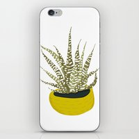 Zebra Cactus iPhone & iPod Skin