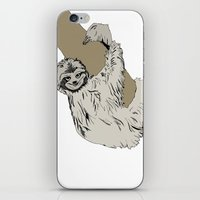 Sloth iPhone & iPod Skin