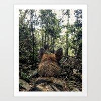 Brisa in the woods Art Print