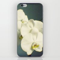 White orchids iPhone & iPod Skin