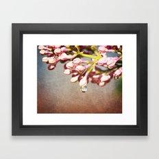 Beautiful Prink Spring Lilacs Framed Art Print