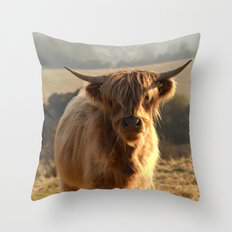 Young Highland Cow Throw Pillow