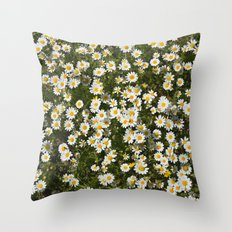 Sea daisies at the mountains Throw Pillow