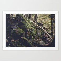 Green forest Art Print