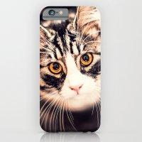 Greta, the cat iPhone 6 Slim Case