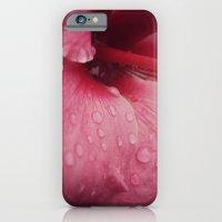Tender Pink iPhone 6 Slim Case
