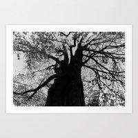 Tree 2 Art Print