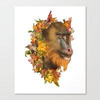 Baboon Rainbows Canvas Print