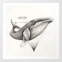 WILD WHALE By Leo Tezcuc… Art Print