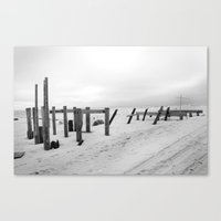 Sandy #2 Canvas Print