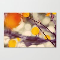 Light Of Autumn Canvas Print