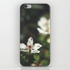 Sweet, Sweet Lies iPhone & iPod Skin