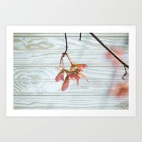 Maple Trees Can Fly Art Print