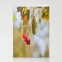 Berry Bokeh Fine Art Photographic Winter Print  Stationery Cards