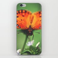 Be Still iPhone & iPod Skin