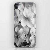 éphémère iPhone & iPod Skin
